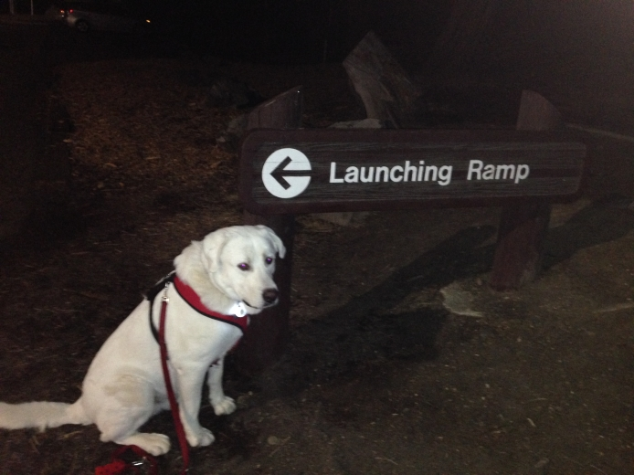 @launch ramp