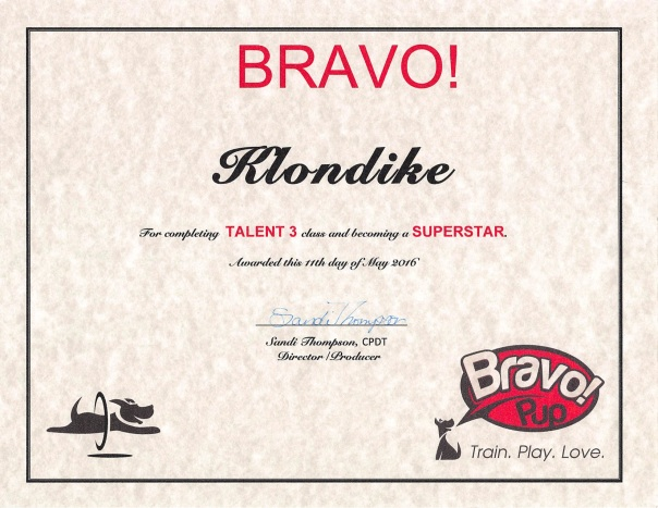 Talent 3 Diploma 5-5-16